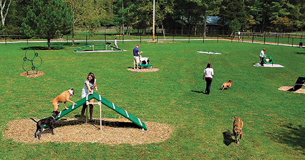 Barkpark By Ultrasite Provides Commercial Dog Park Products That Promote Healthy Behavior In Dogs And Owners The Expert Course Shown Here Is One Of